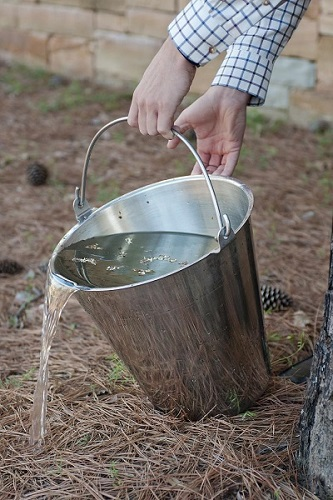 Someone emptying a bucket of water in an outdoor setting.
