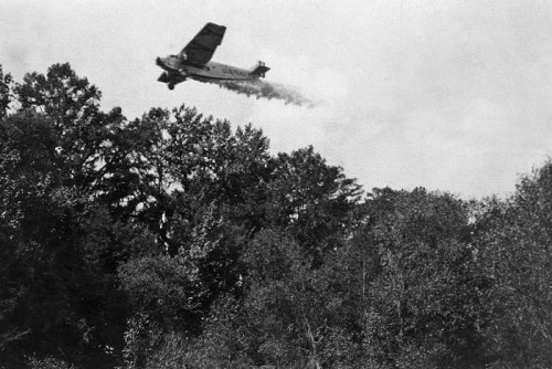 Plane spraying insecticide to eliminate mosquito populations