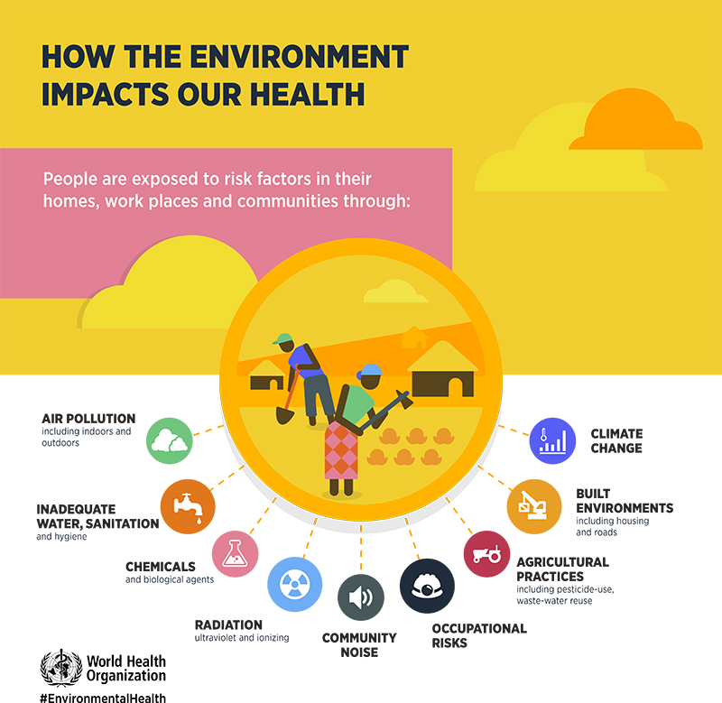 definitions of environmental health  national environmental health  world health organization inforgraphic on environmental health