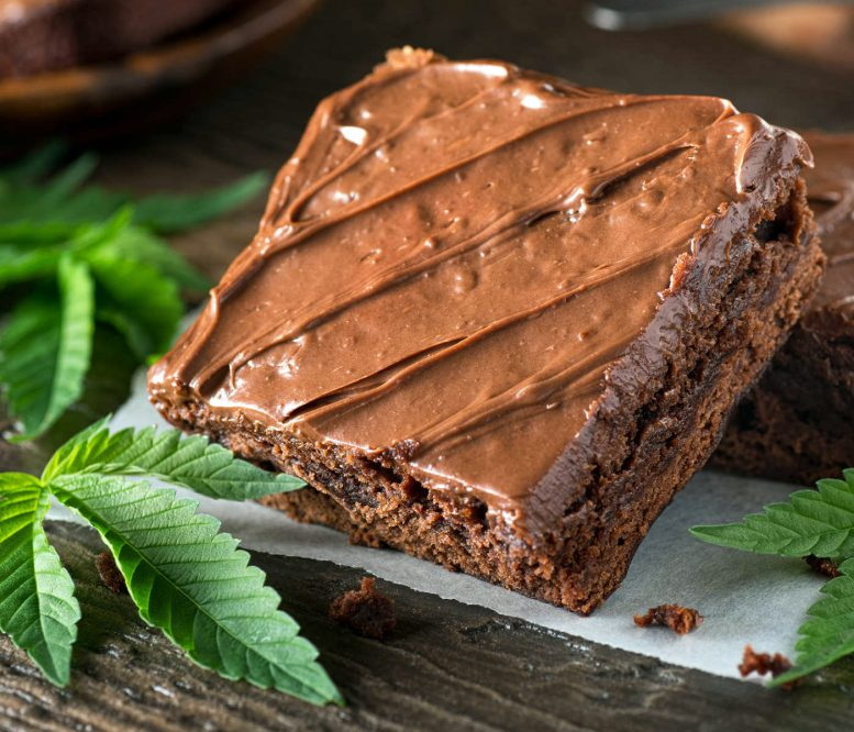 Photos shows a brownie balanced so that it is tilted up towards the light, mint leaves surround it.