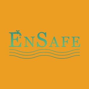 EnSafe Virtual Conference Logo