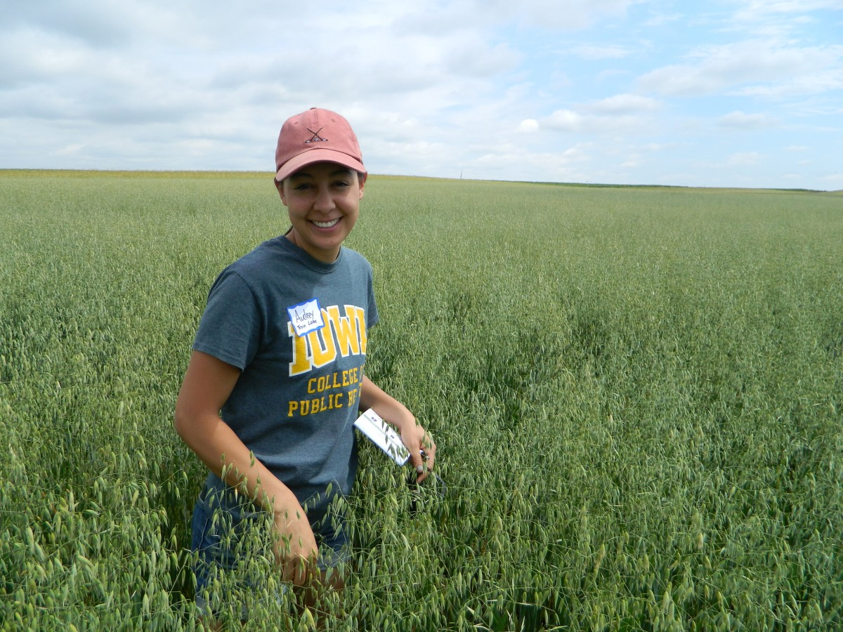 Audrey Tran Lam standing in a field of oats at an on-farm field day in Iowa.