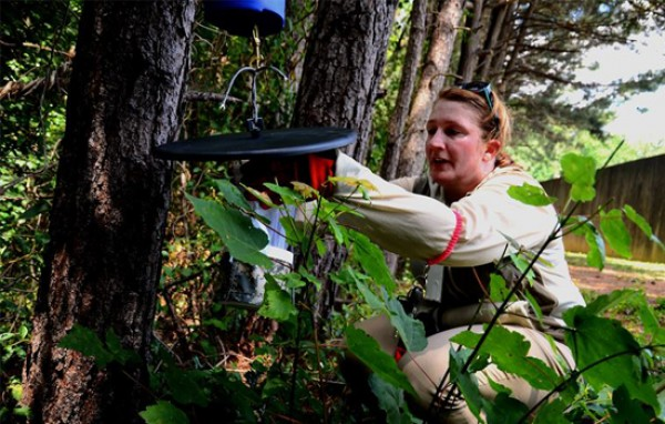 woman outdoors collecting samples and setting up surveillance traps